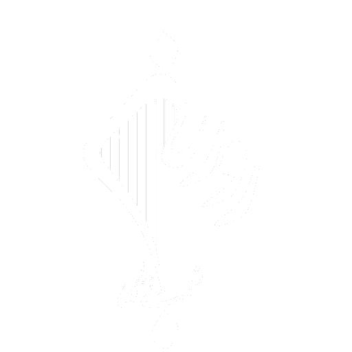 Roozbeh Nematollahi